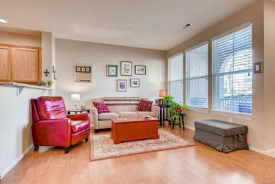 So much beautiful natural light flowing through the spacious living room