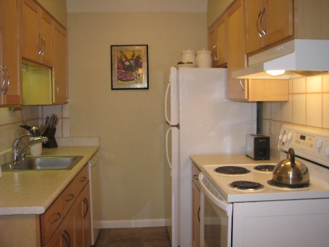 Remodeled Kitchen - maple cabs, new counters and stove