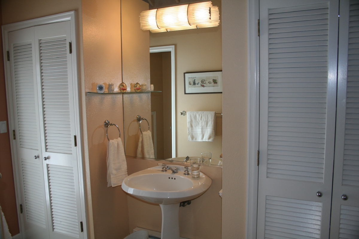 Master Bath has separate shower and tub