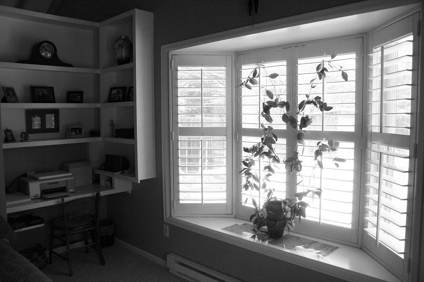 Bay Window in Master