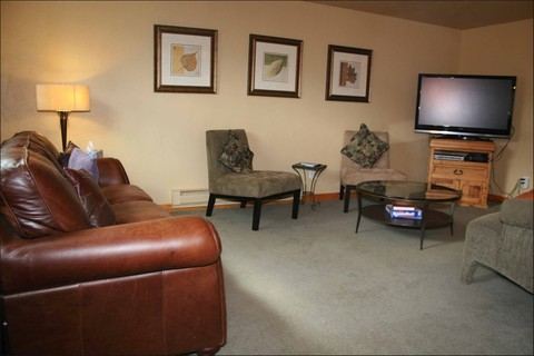 Big Living Room 1