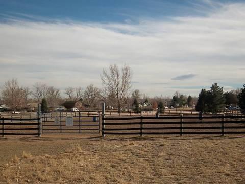 Neighborhood equestrian ring