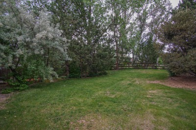 Large grass yard for games/kids/pets