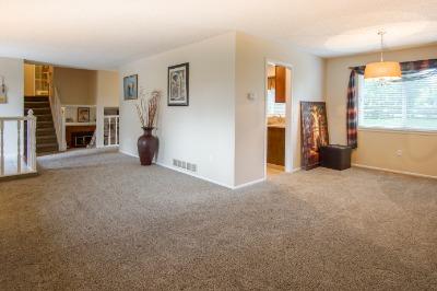 Newer carpet and white trim