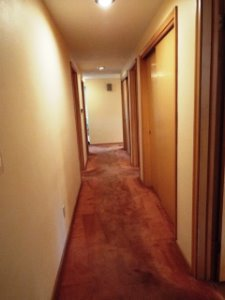 Carpeted Hall has Slider Closets