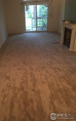 New Carpeting throughout