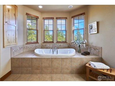 Luxury Master Tub