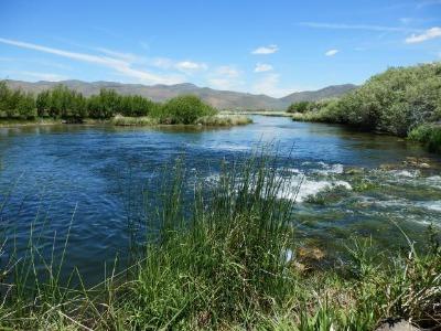 Silver creek is near by