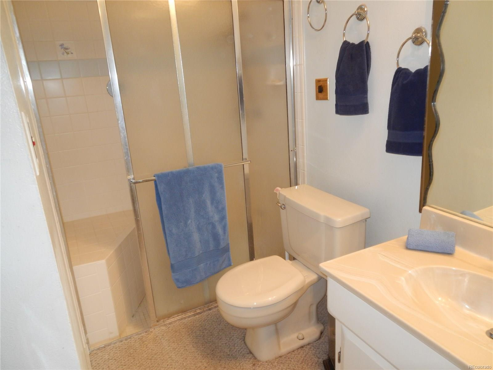 LOWER LEVEL 3/4 BATH WITH STEAM SHOWER