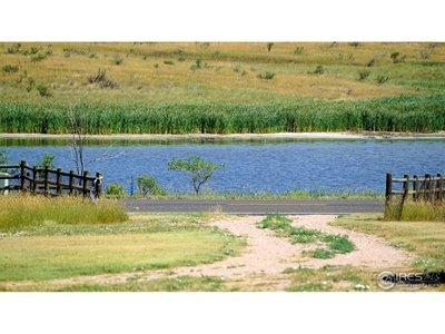 State Ponds Near By