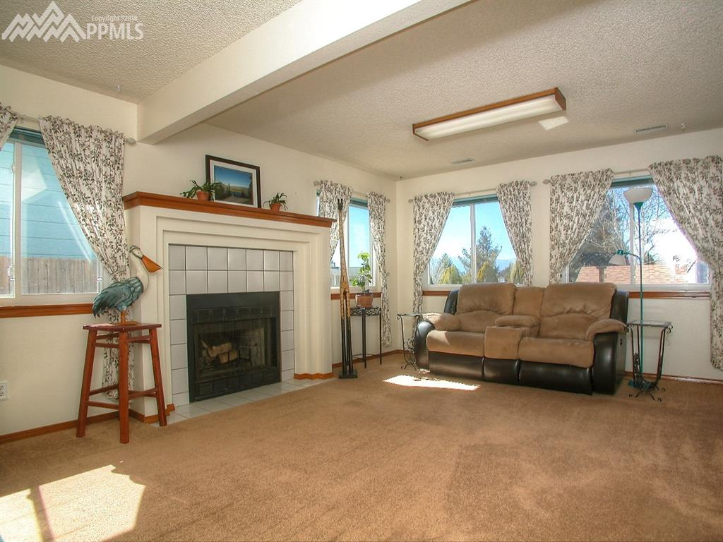 Bright spacious family room with True heat fireplace.