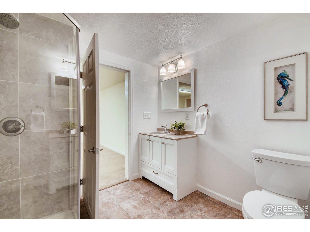 Lower Level Bath w/ Shower