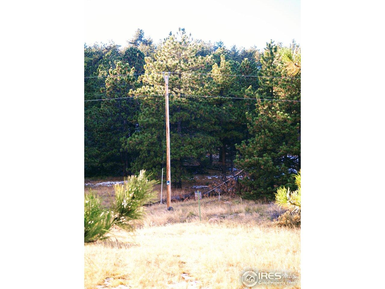 Electric pole on Property