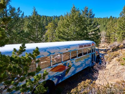 Hippy bus can stay on the property
