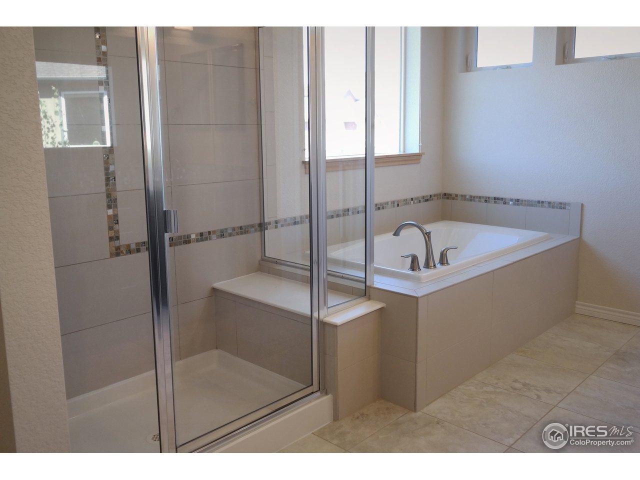 Elegant Shower & Soaking Tub