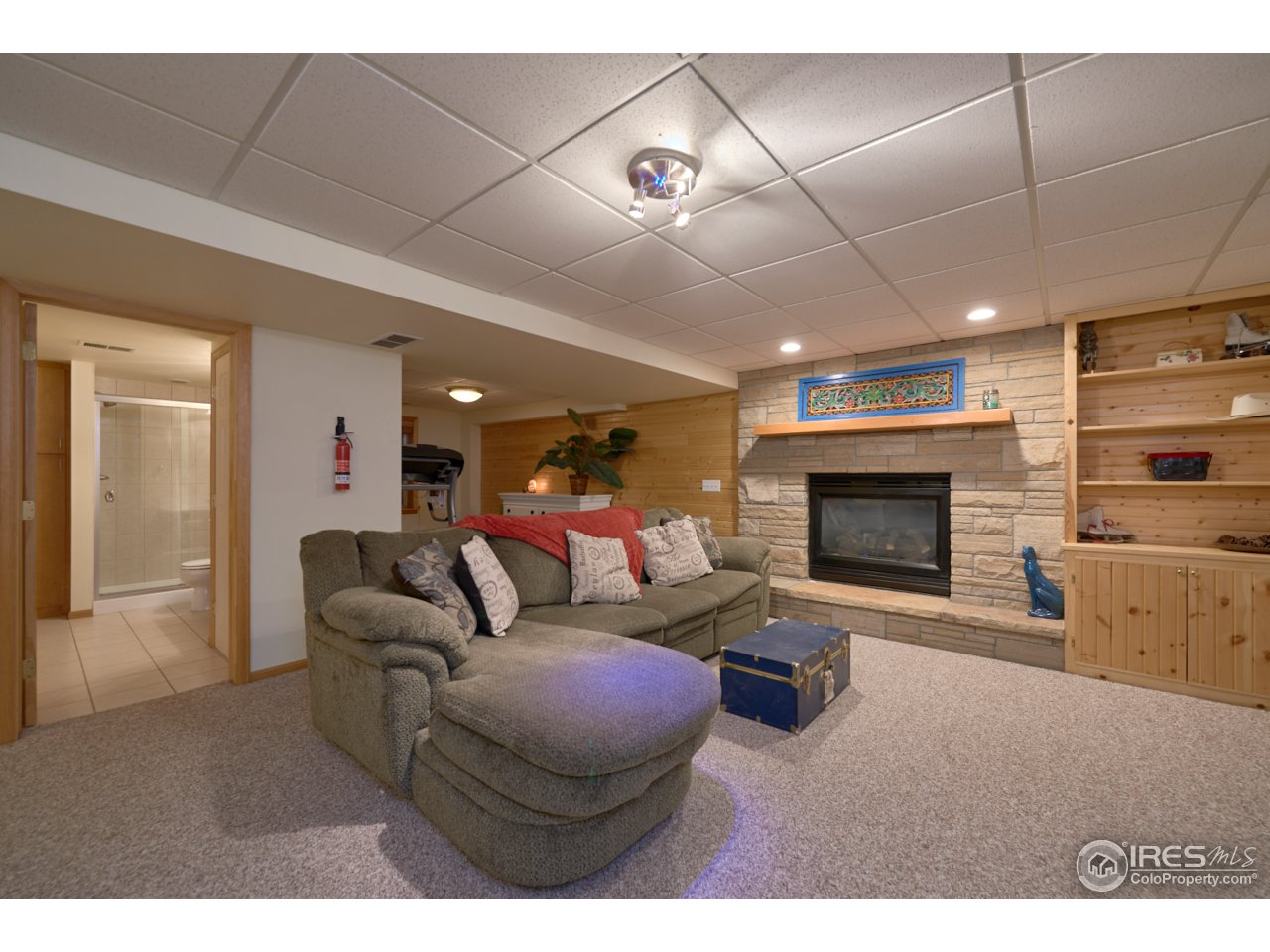 Basement Rec room w/ workout area & gas fireplace