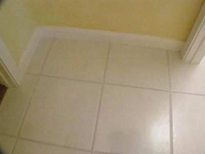 Main Living Area Flooring