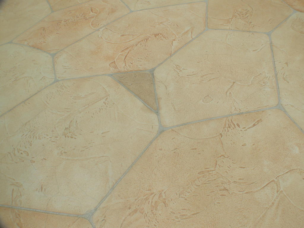 Patio Etched Concrete Floor