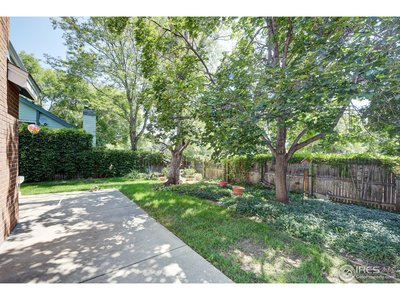 Private backyard with mature trees