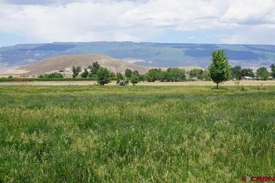 Looking east across fields toward West Elk mountains