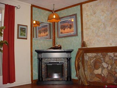 electric fireplace in the family room