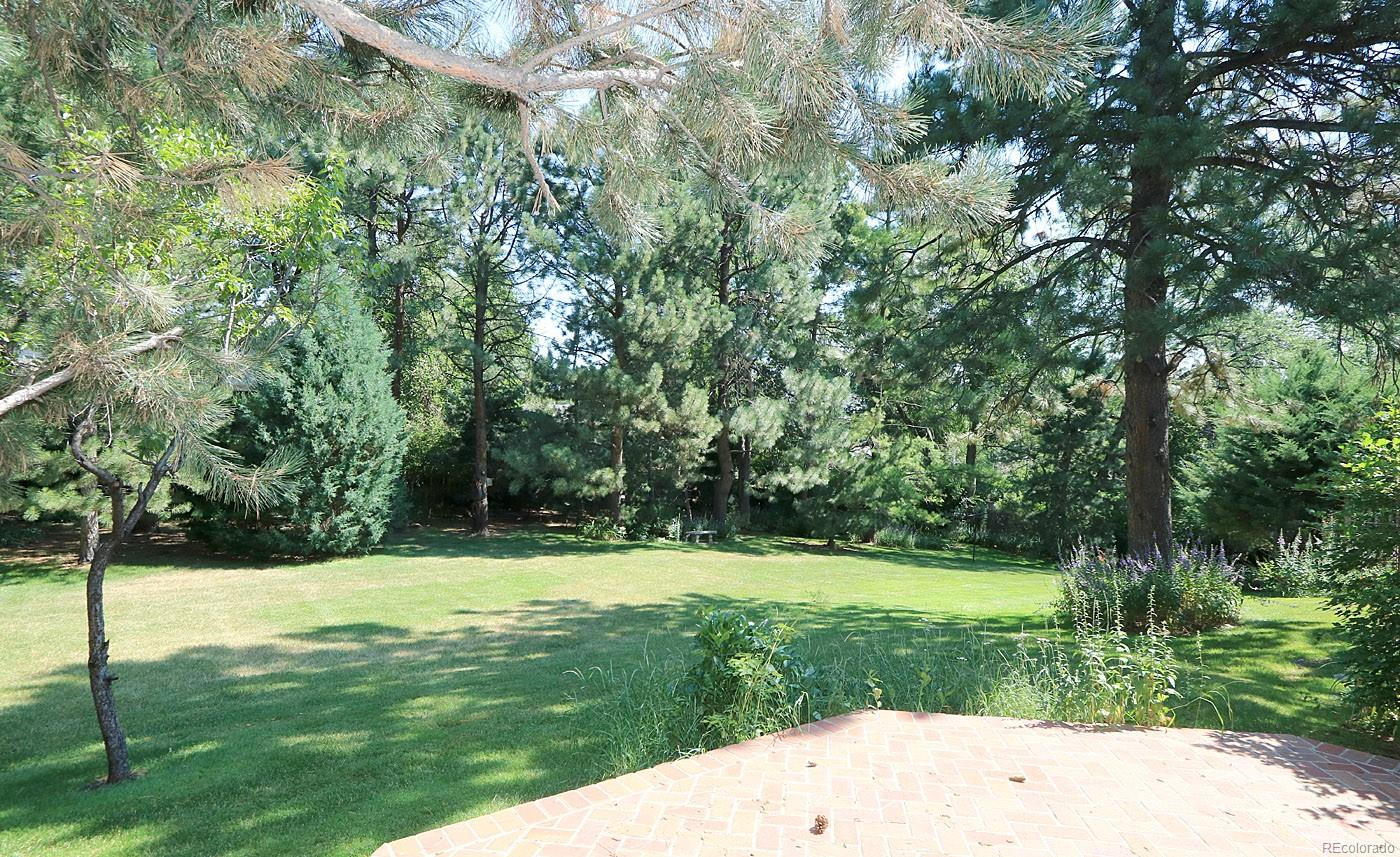 Back Yard is very private with lovely trees