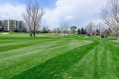 Gorgeous Golf Course for year 'round play