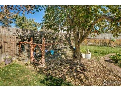 Fenced Garden Area