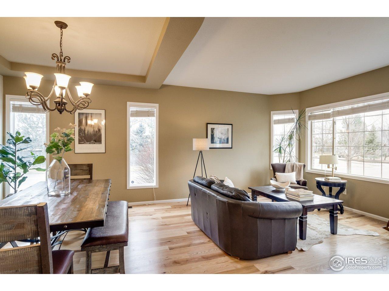 Light Filled Living Room