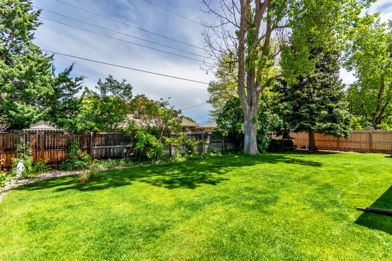Fabulous Back Yard in a Nice Family Neighborhood