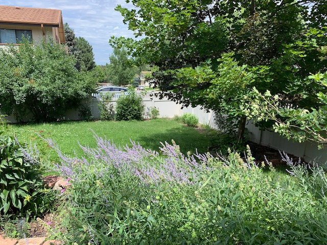 Fenced Backyard is Loaded with Potential
