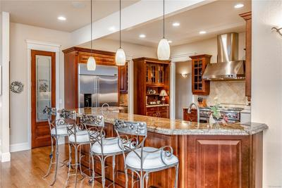 Gourmet kitchen with large bar.