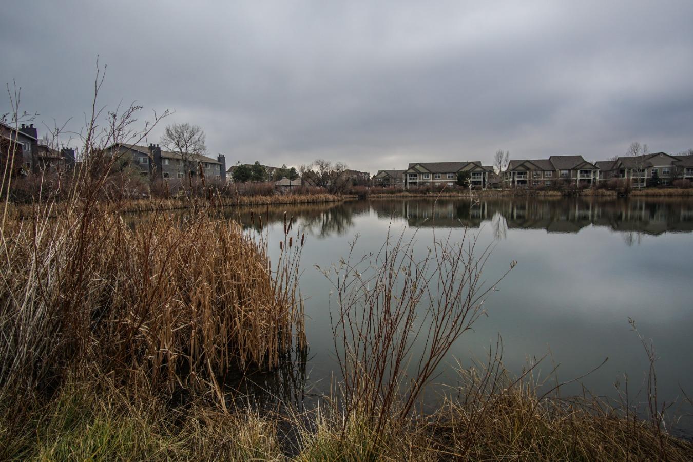 Lake Chalet