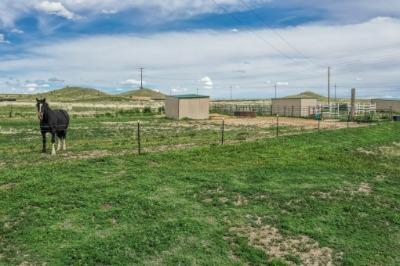 Electric Perimeter Fence