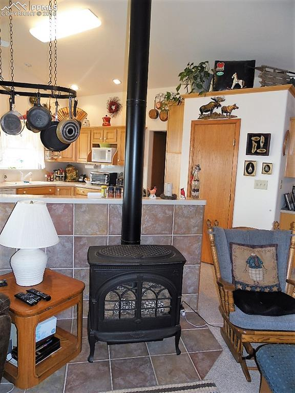 Free standing gas/propane stove