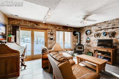 Walk-out lower level family room with wood burning stove