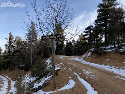 Ponderosa View and Derby Rock Loop intersection. Lot is up the road about 200 ya