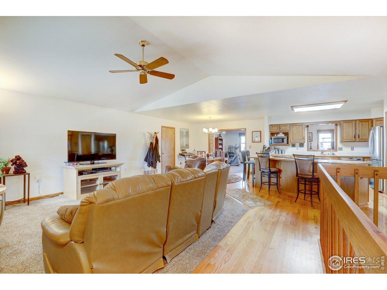 Livingroom with newer carpet