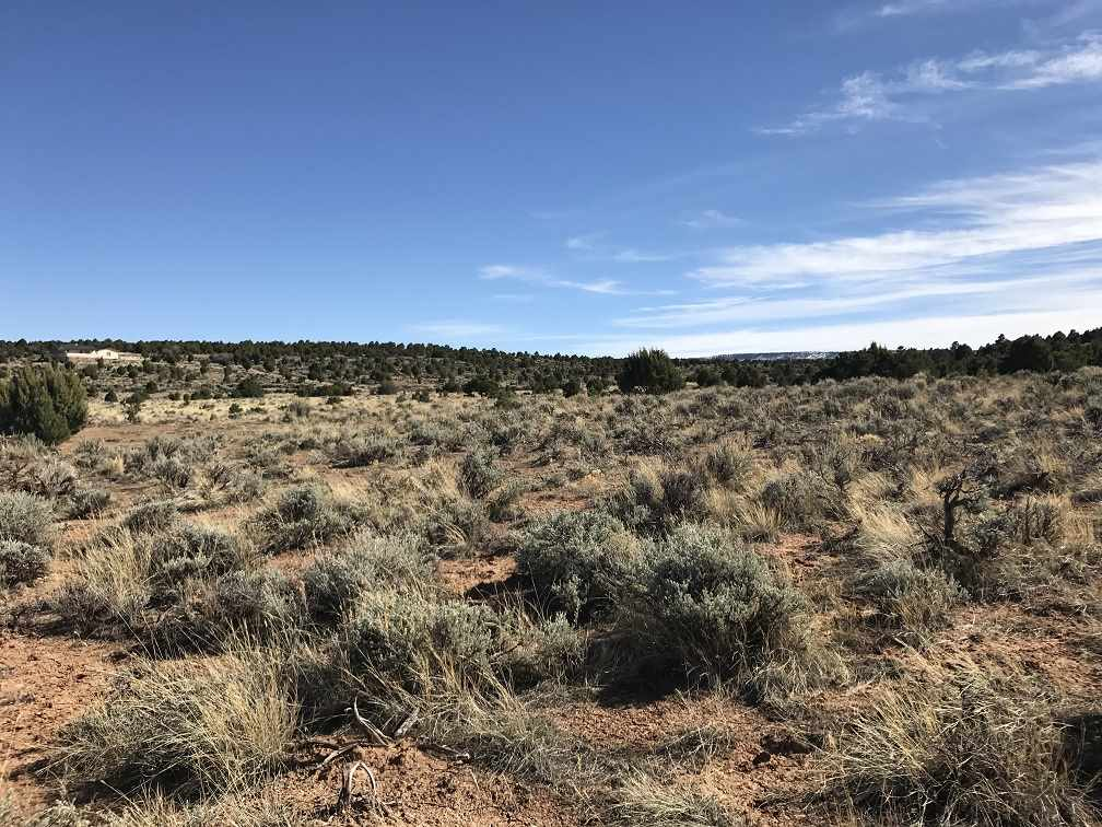 This homesite is an easy less-than-20-minute commute to Grand Junction on a pave