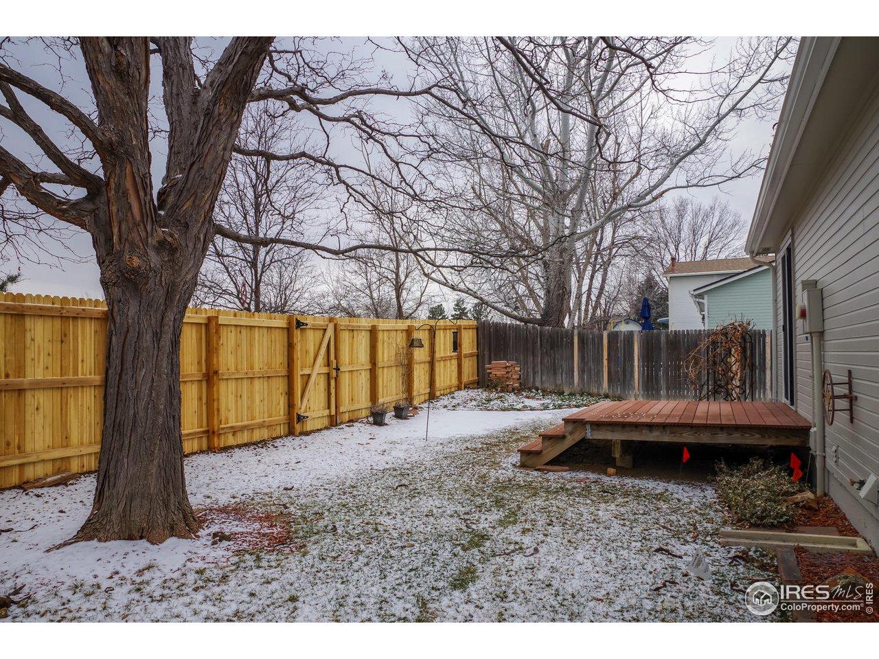 Fenced back yardBed