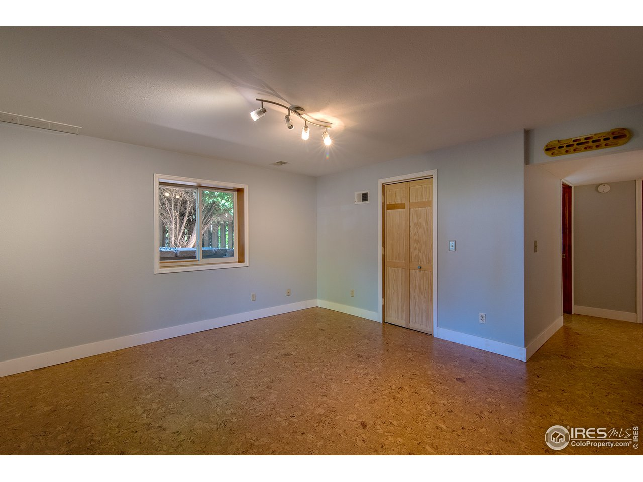 Lower Flex Room