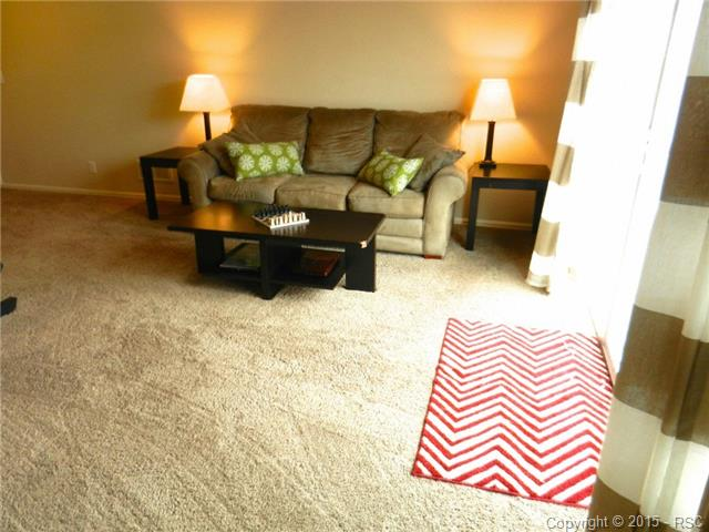 Additional Family Room lower level~Walk-out to backyard