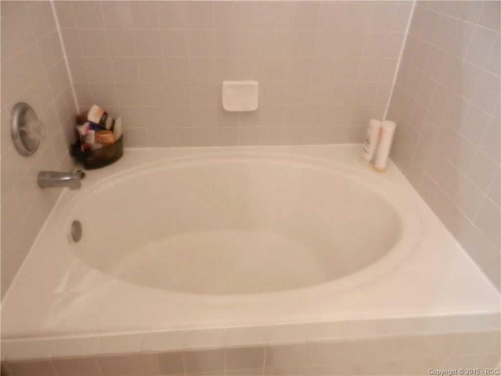 Garden Soaking Tub in Master Bath