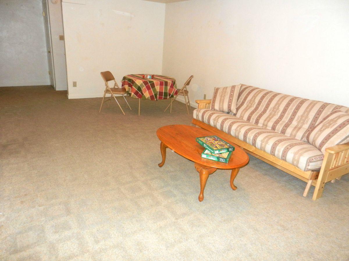 Large Bonus Room in Basement