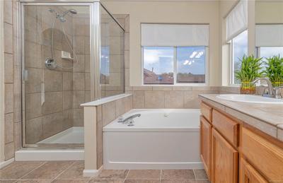 Tub and Shower Master Bathroom