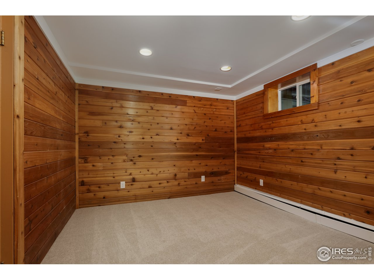 Basement Half-Bathroom