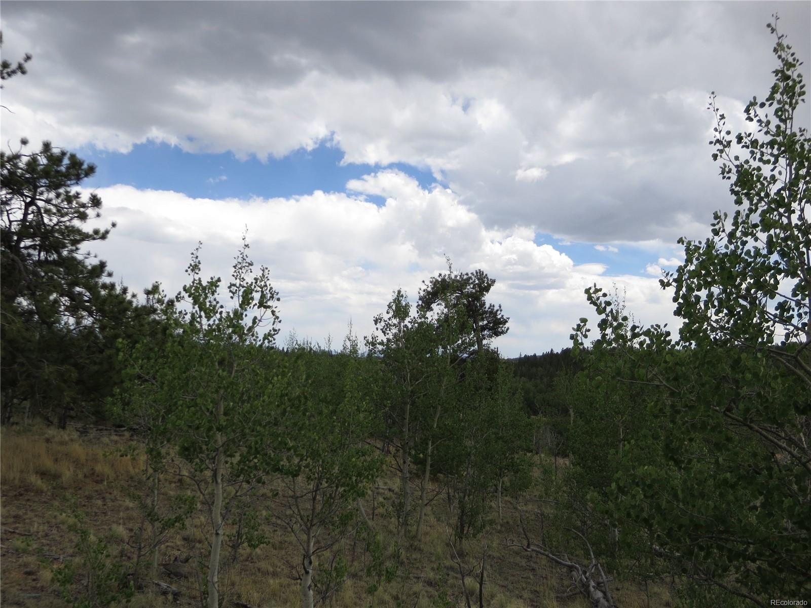 Lot with Aspen and Pine trees in natural setting