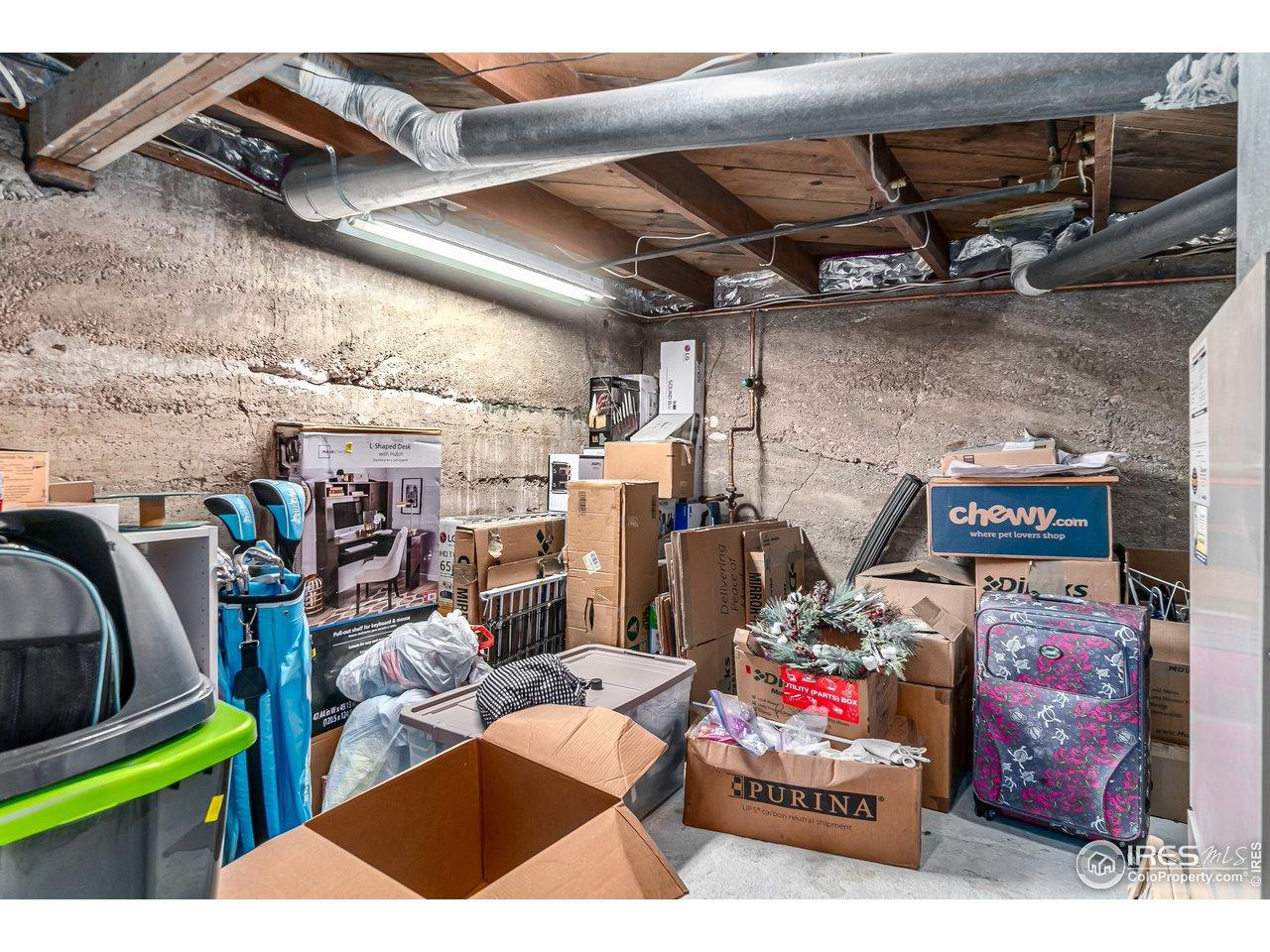 Basement storage area mechanical room