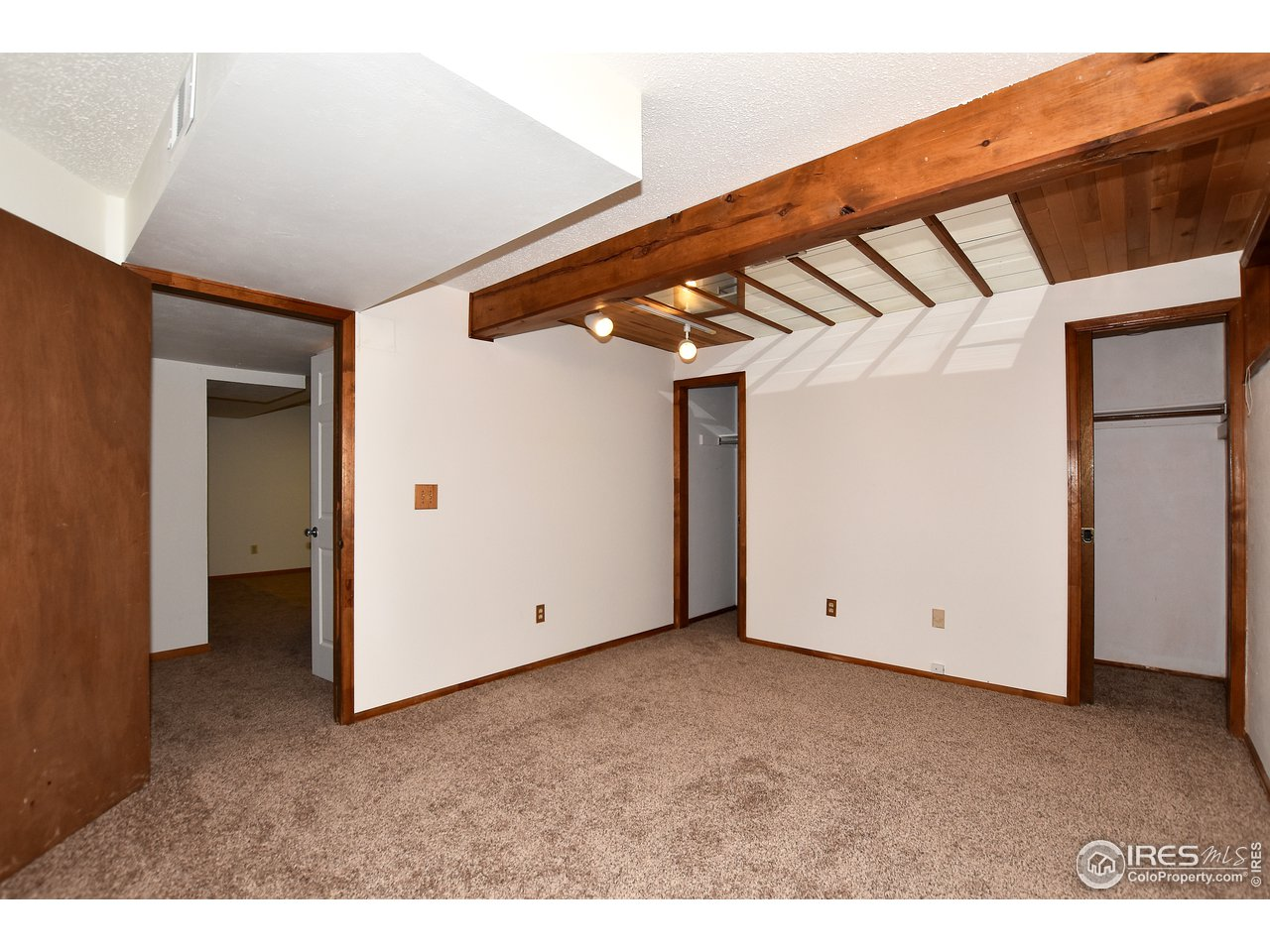 Basement Bedroom with dual closets!