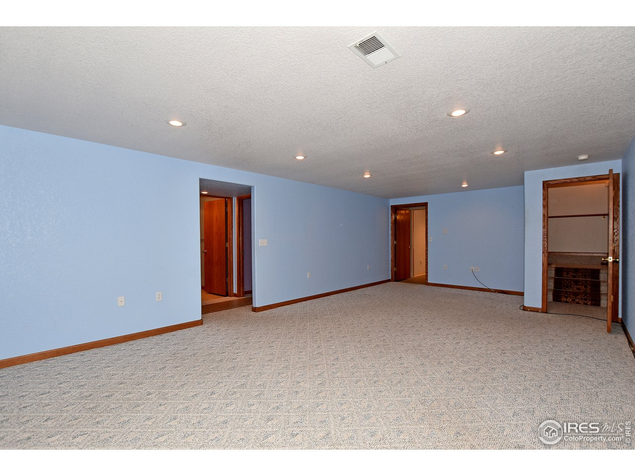 Family or Rec room in basement